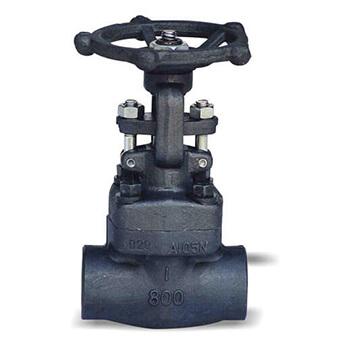 other valve