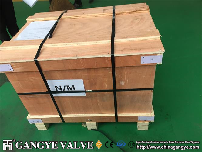 BW Forged Steel Check Valve (4)