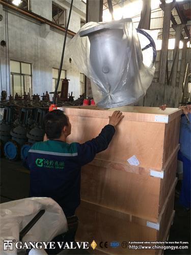 Bolted Bonnet Carbon Steel Globe Valve (3)