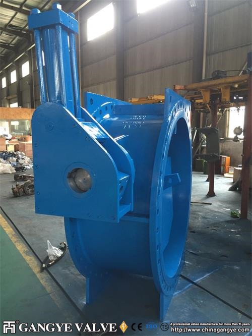 DN1600 butterfly type check valve (1)