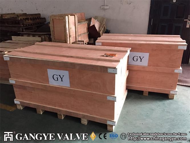 Forged Steel Wafer Rising Check Valve (4)
