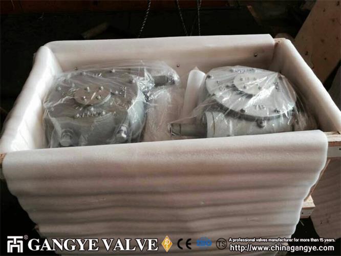 WCB Plug Valve (5)