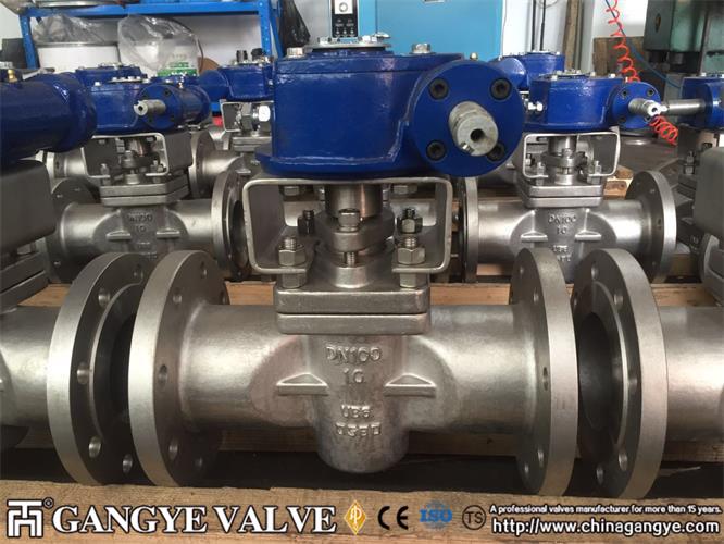 DIN standard plug valves, 904L material (10)