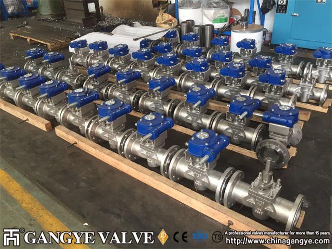 DIN standard plug valves, 904L material (8)