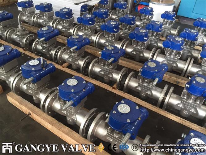 DIN standard plug valves, 904L material (9)