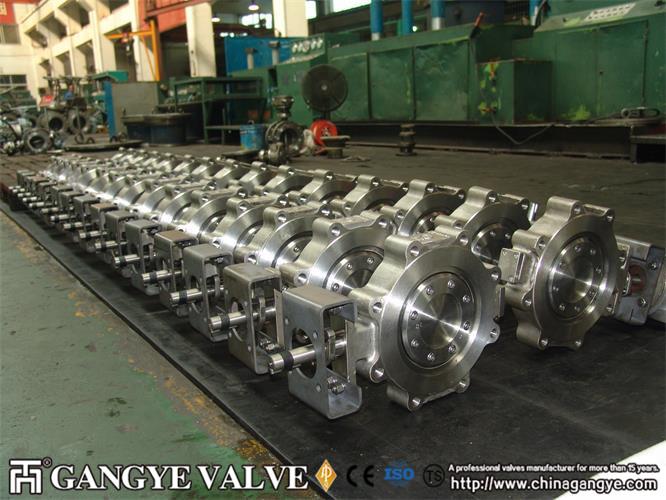 api-lug-type-butterfly-valve-10gangye-valve