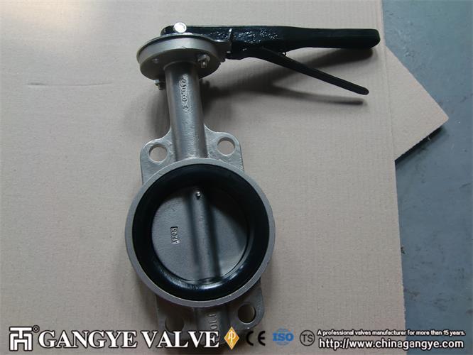 lined-lug-butterfly-valve-gangye-group-2